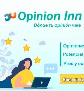 Opinion Inn panel